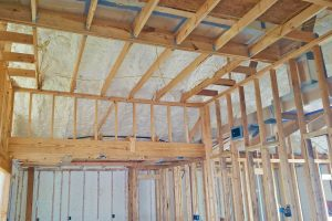 Energy Efficient Homes: Live the Revolution